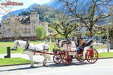 cavallo con carrozza una carrozza trainata da un cavallo con turisti foto