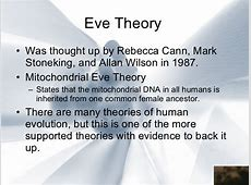 The Theory Of Evolution States That,Theory of Evolution Flashcards | Quizlet,The theory of evolution quizlet|2020-06-05