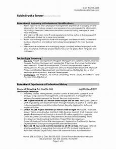 exles of professional summary for resume how to write