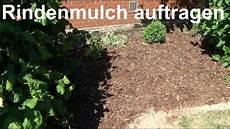 Rindenmulch In Blumenbeete Richtig Verteilen Und So