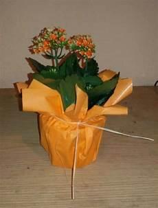 blumentopf selber basteln blumige rettung in letzter sekunde geschenke verpacken geschenke einpacken und geschenkeideen
