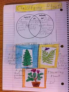 classifying plants worksheets 3rd grade 13524 classifying plants interactive science journal interactive science notebook plant science