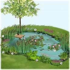 projet am 233 nagement jardin bassin naturel au jardin