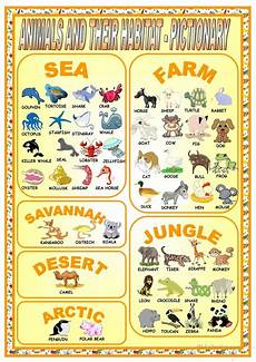 animals habits worksheets 13897 animals and their habitat pictionary worksheet free esl printable worksheets made by teachers