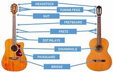 Parts Of The Guitar Diagrams For Acoustic And Electric