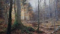 46 Daftar Populer Gambar Naturalisme Pemandangan Yang