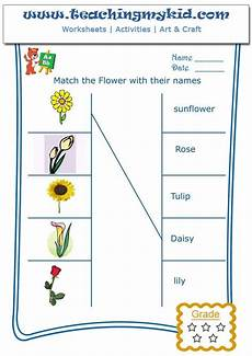 types of plants worksheets for grade 1 13701 printable kindergarten worksheets match flowers with name 1 teachingmykid
