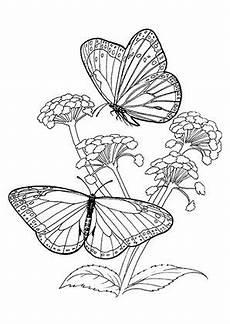 Ausmalbilder Blumen Und Tiere Pin Auf Ausmalbilder Tiere