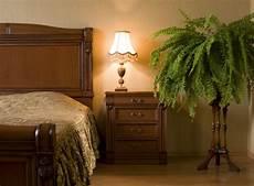 pflanzen im schlafzimmer schädlich sind zimmerpflanzen im schlafzimmer gesundheitsgef 228 hrdend