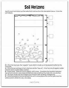 plants and soil worksheets 13633 unit 1 16 science curriculum earth space science plant science