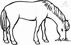 ausmalbilder pferde leicht grosse 35 36 kb 37921 x angesehen