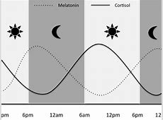 melatonin for sleep dosage