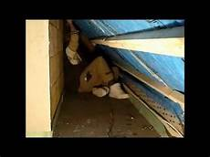 dach dämmen innen anleitung dachausbau dachisolierung 2 mpg