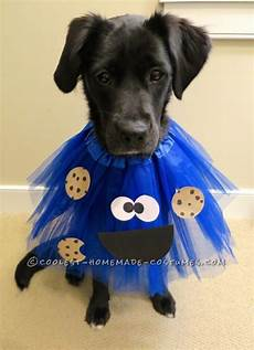 25 b 228 sta noter f 246 r cello id 233 erna p 229 pinterest cellos notblad och pianomusik deliciously adorable cookie monster costumes for dogs