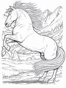 pferde zum ausmalen 01 ausmalbilder pferde ausmalen und
