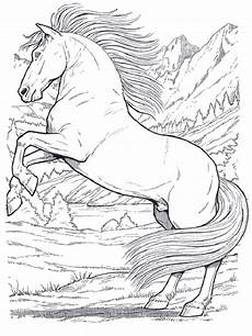 Malvorlagen Pferde Springen Pferde 01 Ausmalbilder Pferde Ausmalen Ausmalbilder