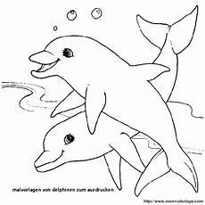Ausmalbilder Delfine Drucken 10 Best Malvorlagen Delfin Malvorlagen Delfine