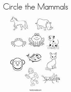 animals and their coloring pages 17201 circle the mammals coloring page twisty noodle actividades para preescolar actividades