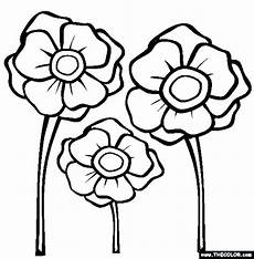 poppy drawing template at getdrawings free download