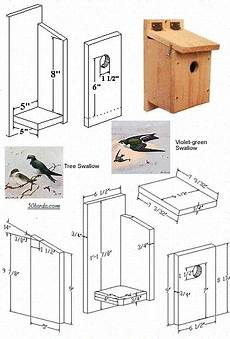 swallow bird house plans swallow bird house we have plenty of these guys around
