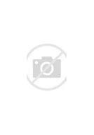 Как написать губернатору новосибирской области