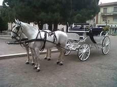 bianchi carrozze noleggio carrozza matrimoni affitto carrozza con