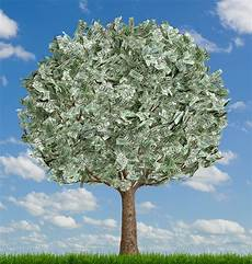 armedlaughing money tree