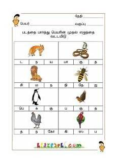 tamil writing worksheets for grade 1 22871 best tamil worksheets for class 1 1st grade worksheets worksheets for class 1 lkg worksheets