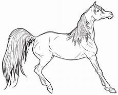 realistic coloring pages to print coloring home