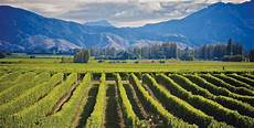 horaire nouvelle zelande quels vins 224 l autre bout du monde cap sur la nouvelle