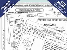 gcse biology diffusion osmosis and active transport worksheet pack teaching resources