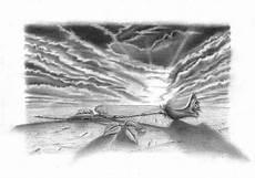 zeichnungen galerie natur blumen
