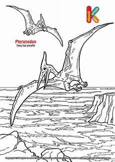 Mewarnai Dinosaurus Terbang Kumpulan Gambar Bagus