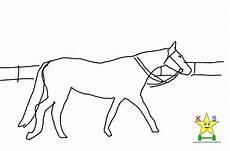 pferde ausmalbilder klein pferde ausmalbilder und malvorlagen kostenlos
