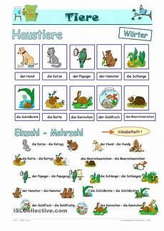 kinder haben haustiere german and learn german