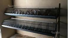 gabbie per conigli usate gabbie conigli per fattrici usate da grosseto posot class