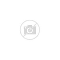 Image result for iphone 5s