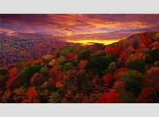Fall Foliage Wallpaper for Desktop ·? WallpaperTag