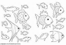 Kika Malvorlagen Romantis Malvorlage Fisch A4