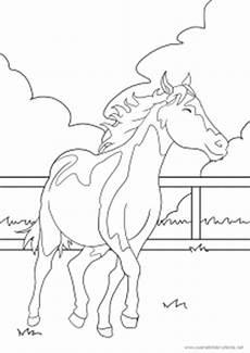 Www Pferde Ausmalbilder Zum Ausdrucken De Das Vierte Pferd Ausmalbild Wie Immer Kostenlos
