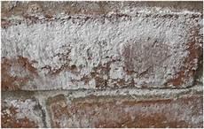 comment enlever le salpêtre sur les murs mur salpetre que faire bande transporteuse caoutchouc