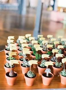 Gastgeschenk Hochzeit Sukkulente Succulent Favors