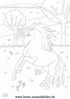 malvorlage pferd wasser ausmalbilder ausmalen und