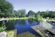 Schwimmteich Selber Anlegen - schwimmteich selber bauen was sie unbedingt wissen m 252 ssen