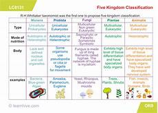plant kingdom worksheets for grade 2 13758 learning card for five kingdom classification biology classroom biology learning cards
