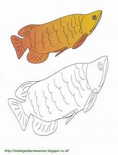 Gambar Mewarnai Ikan Arwarna Untuk Anak Paud Dan Tk