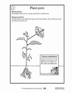 science worksheets plants grade 3 12350 kindergarten math worksheets and 3 more makes parts of a plant kindergarten math worksheets