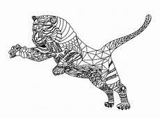 tigers 56486 tigers malbuch fur erwachsene