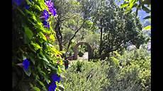 giardini mortella ischia giardini la mortella botanischer garten ischia italy