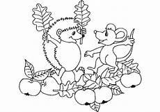 Malvorlagen Kostenlos Nds 28 Malvorlagen Gratis Tiere Igel Farbung